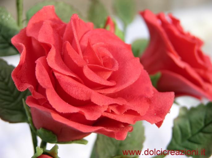 Dolci creazioni by carla rosa rossa in pasta di zucchero for Riproduzione rose